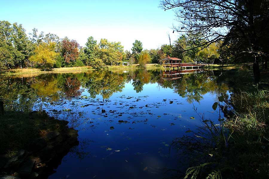 Eureka Springs Lodging Cabins Amp Suites Pond Mountain Lodge
