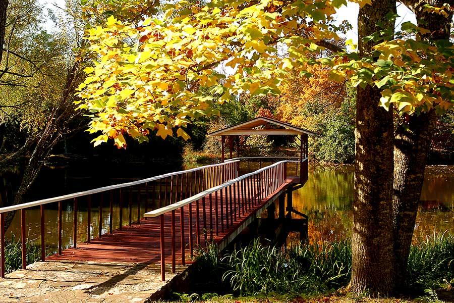 Pier in Fall