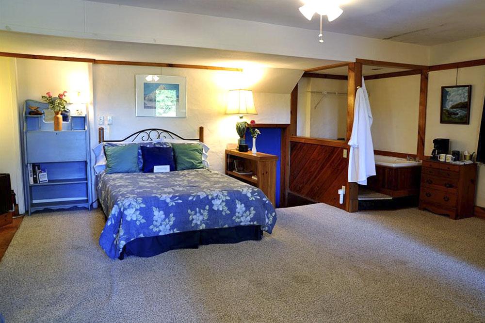 Adult Suite 101
